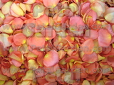 Aloha Freeze Dried Rose Petals