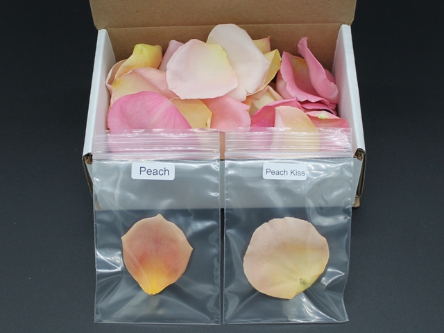 Freeze dried rose petals sample