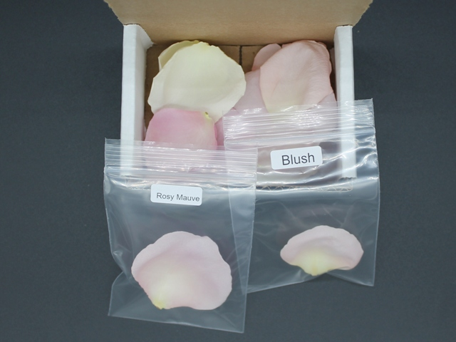 sample of freeze driedrose petals