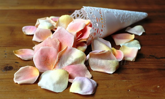 peach freeze dried rose petals