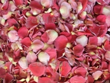 Apple Freeze Dried Rose Petals