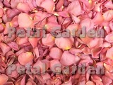 Aurora Freeze Dried Rose Petals