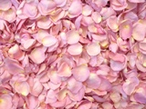 Bridal Blush Freeze Dried Rose Petals