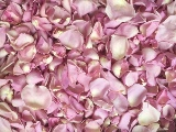 Rosy Mauve Freeze Dried Rose Petals