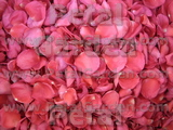 Hot Pink Freeze Dried Rose Petals