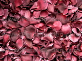 Plum Dried Rose Petals