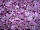 Purple Freeze Dried Petals