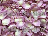 Whisper Freeze Dried Rose Petals