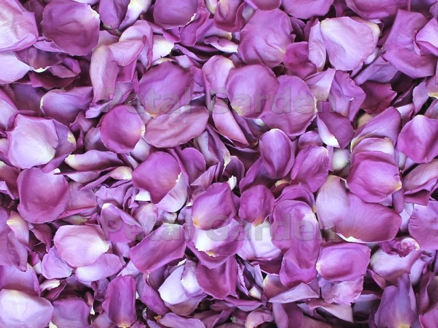amethyst freeze dried rose petals