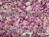 Berry Frost Freeze Dried Rose Petals