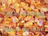 Citrus Freeze Dried Rose Petals
