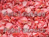 Flamingo Dried Rose Petals
