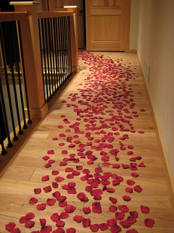 trail of rose petals