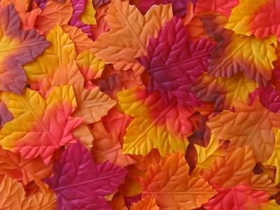 http://www.petalgarden.com/images/s-fall-leaves.jpg