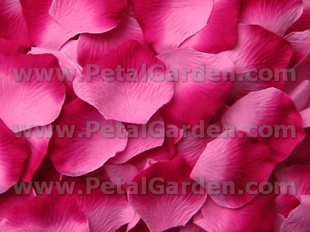 Berry silk rose petals
