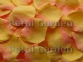 Citrus Silk Rose Petals