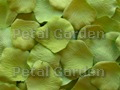 Green Apple Silk Rose Petals
