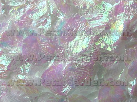 Iridescent silk rose petals