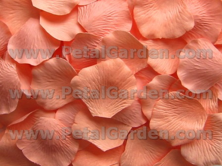 Peachy silk rose petals