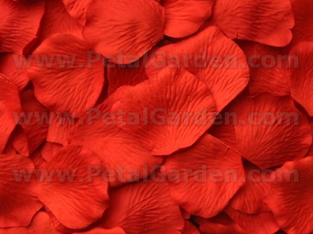 Tabasco silk rose petals