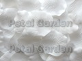 White Silk Rose Petals