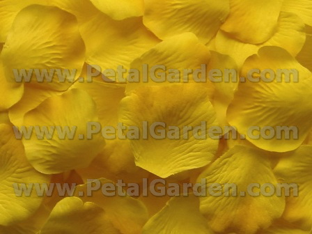 Yellow silk rose petals