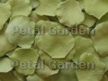 Avocado Silk Rose Petals