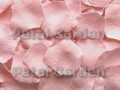 Blush Silk Rose Petals