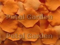 Butterscotch Silk Rose Petals