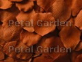 Copper Silk Rose Petals