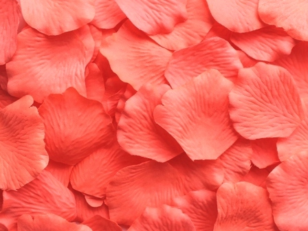 Flamingo silk rose petals