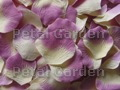 Ivory w/ Purple Silk Rose Petals
