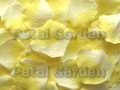 Ivory w/ Yellow Freeze Dried Petals
