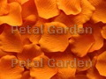 Orange Silk Rose Petals