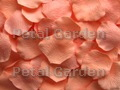 Peachy Freeze Dried Petals