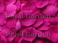 Raspberry Silk Rose Petals