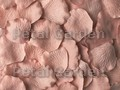 Rose Quartz Silk Rose Petals