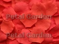 Salmon Silk Rose Petals