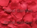 Strawberry Silk Rose Petals