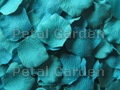 Teal Silk Rose Petals