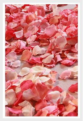 Silk rose petals freeze dried rose petals petal garden silk rose petals mightylinksfo